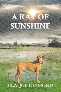 Book cover which displays a dog standing in the pouring rain with a house in the background